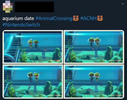 animal crossing date
